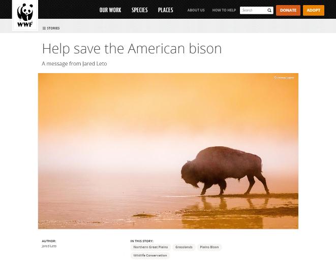 web design trend 2016 WWF sans serif